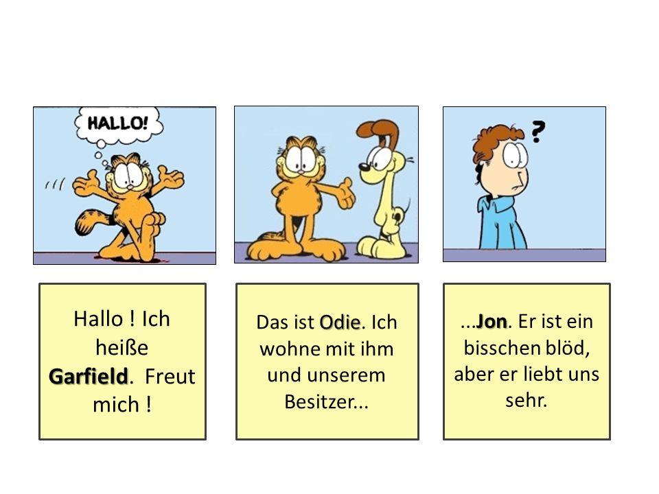 Hallo ! Ich heiße Garfield. Freut mich !