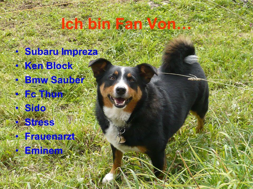 Ich bin Fan Von… Subaru Impreza Ken Block Bmw Sauber Fc Thun Sido