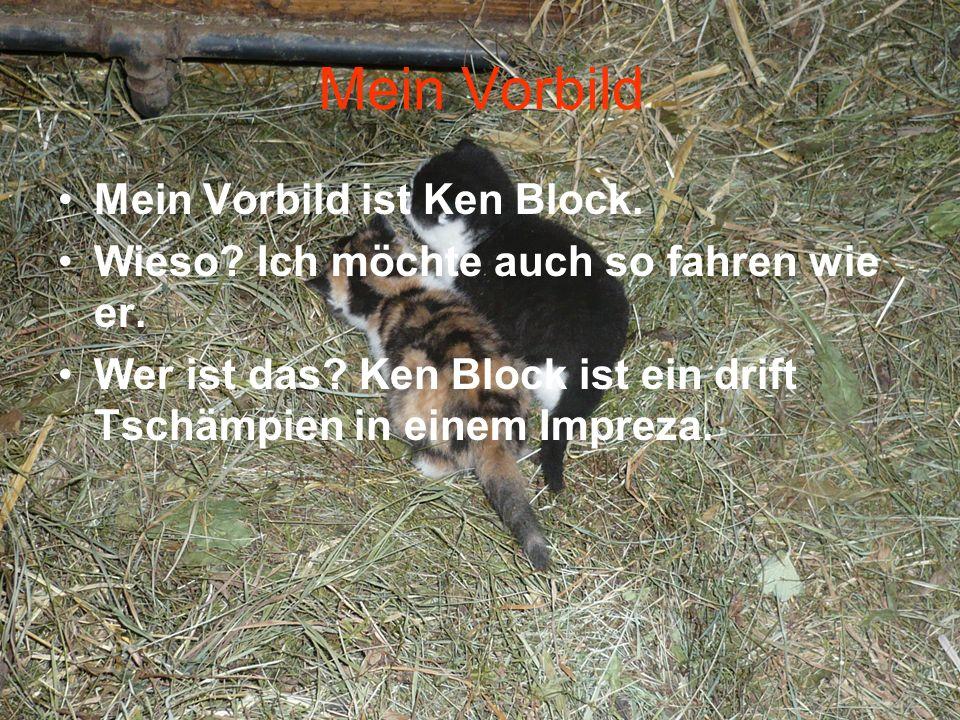 Mein Vorbild Mein Vorbild ist Ken Block.