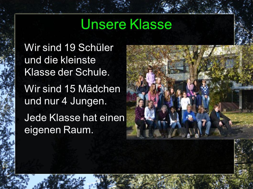 Unsere Klasse Wir sind 19 Schüler und die kleinste Klasse der Schule.