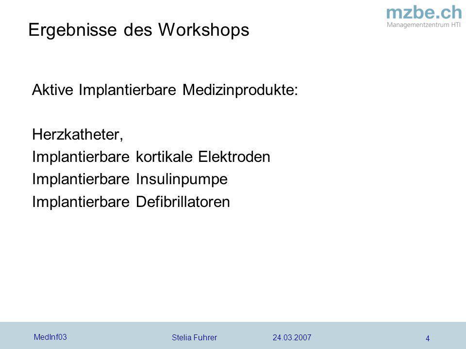 Ergebnisse des Workshops