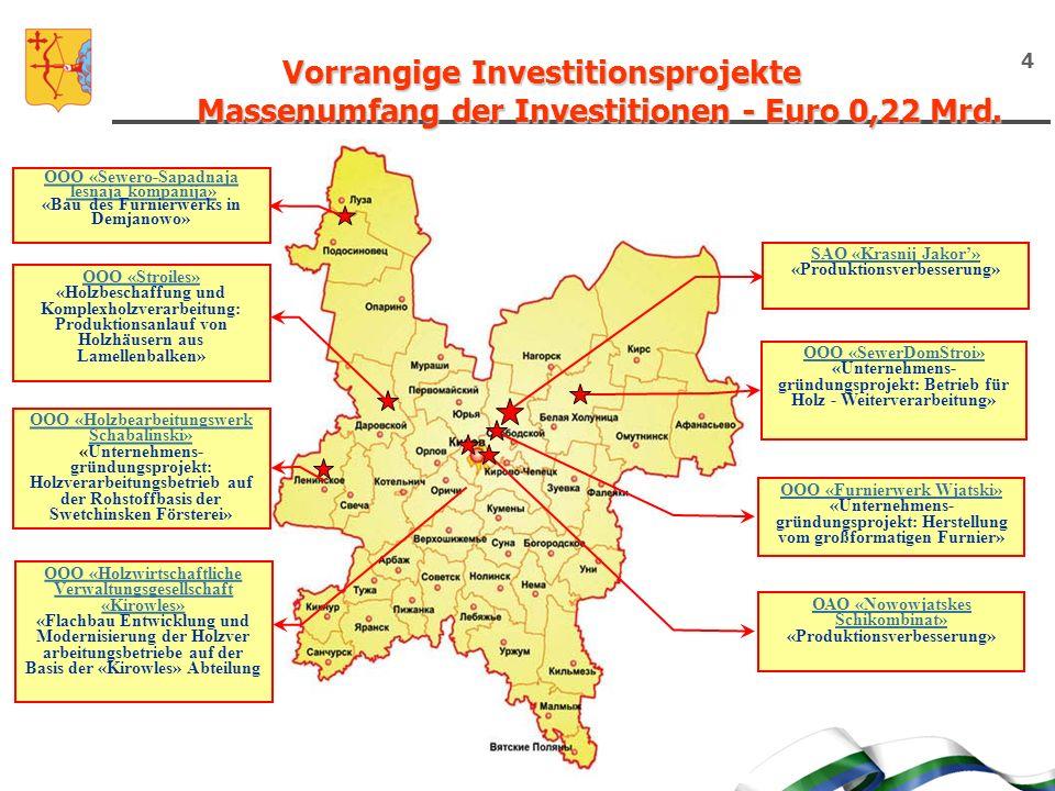 Vorrangige Investitionsprojekte