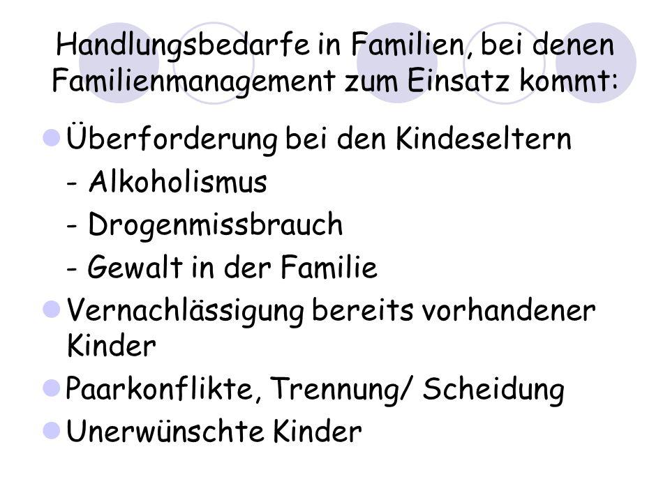 Handlungsbedarfe in Familien, bei denen Familienmanagement zum Einsatz kommt: