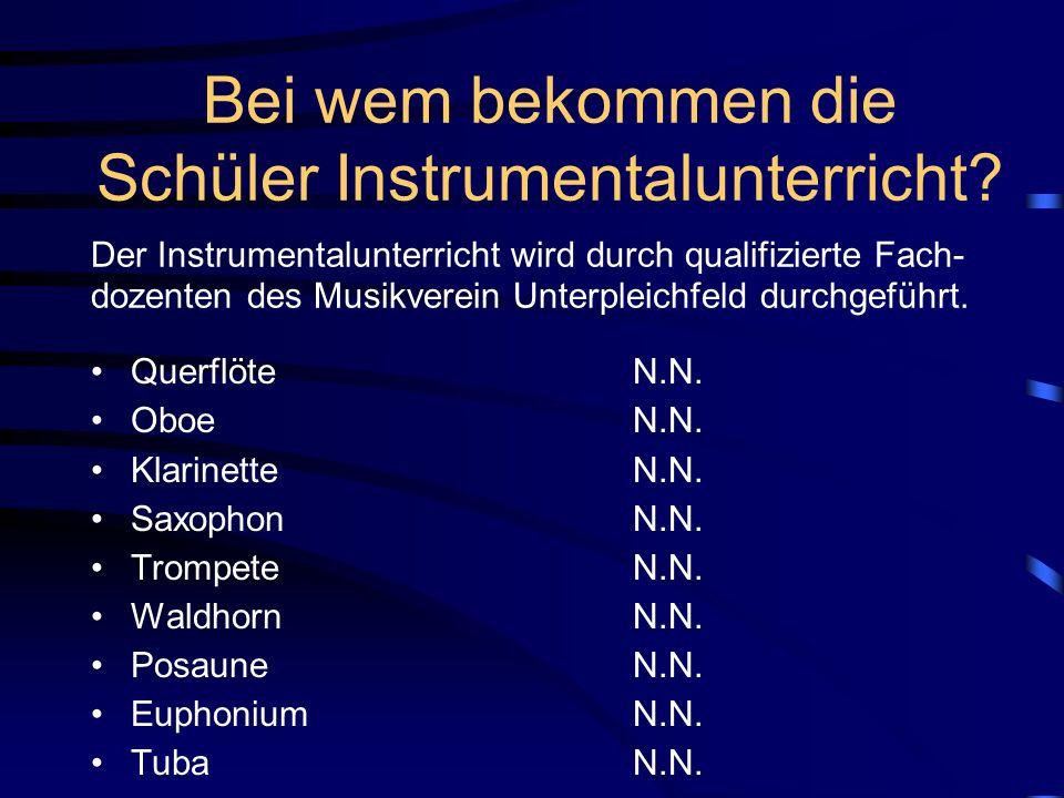 Bei wem bekommen die Schüler Instrumentalunterricht