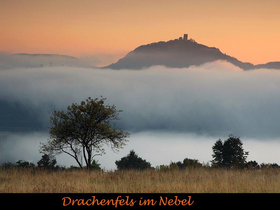 Drachenfels im Nebel