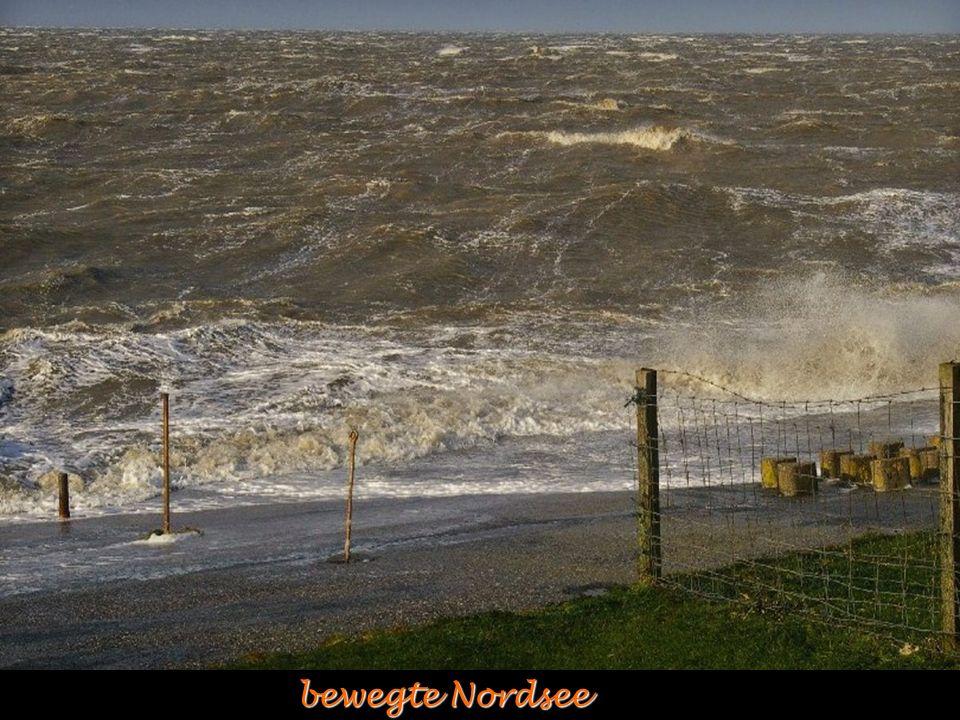 bewegte Nordsee