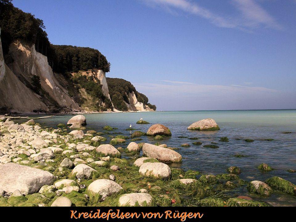 Kreidefelsen von Rügen
