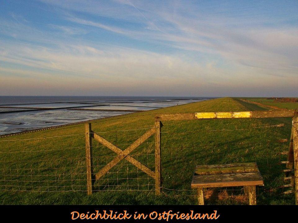 Deichblick in Ostfriesland