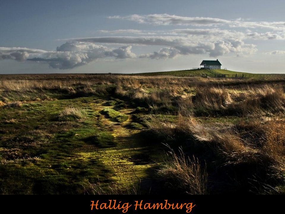 Hallig Hamburg