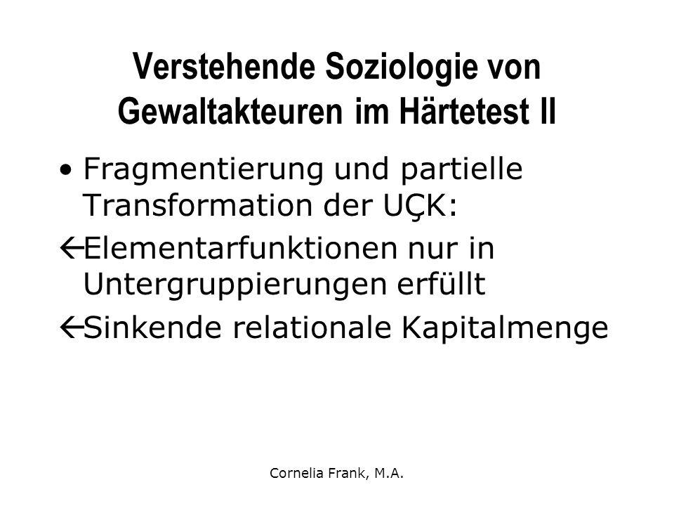 Verstehende Soziologie von Gewaltakteuren im Härtetest II