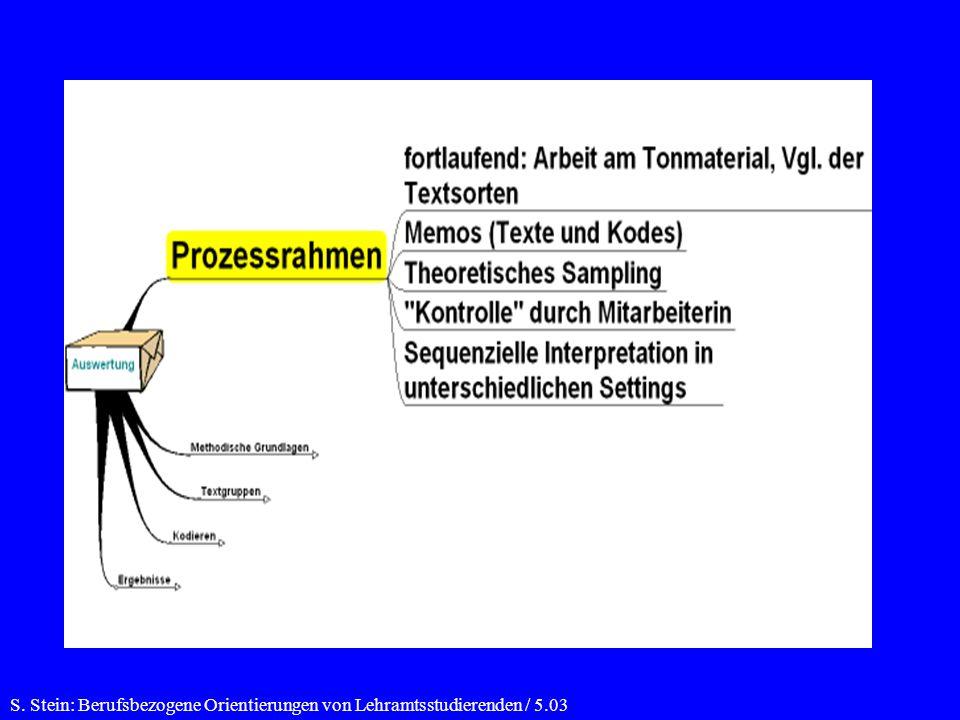 S. Stein: Berufsbezogene Orientierungen von Lehramtsstudierenden / 5