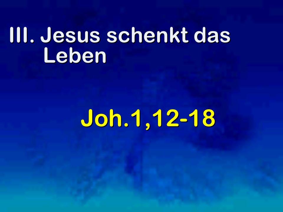 III. Jesus schenkt das Leben