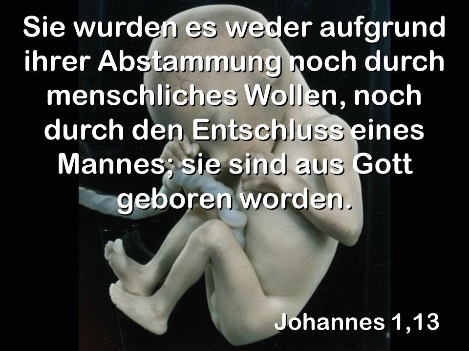 Sie wurden es weder aufgrund ihrer Abstammung noch durch menschliches Wollen, noch durch den Entschluss eines Mannes; sie sind aus Gott geboren worden.