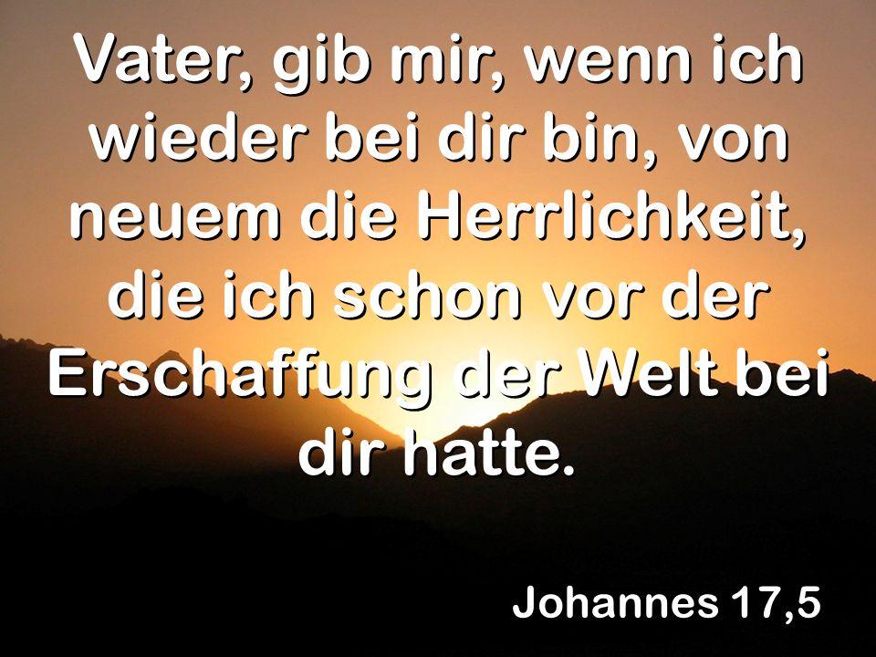 Vater, gib mir, wenn ich wieder bei dir bin, von neuem die Herrlichkeit, die ich schon vor der Erschaffung der Welt bei dir hatte.