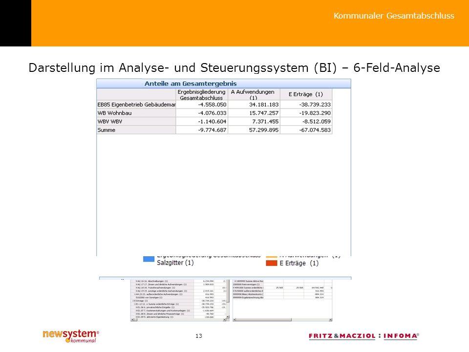 Darstellung im Analyse- und Steuerungssystem (BI) – 6-Feld-Analyse