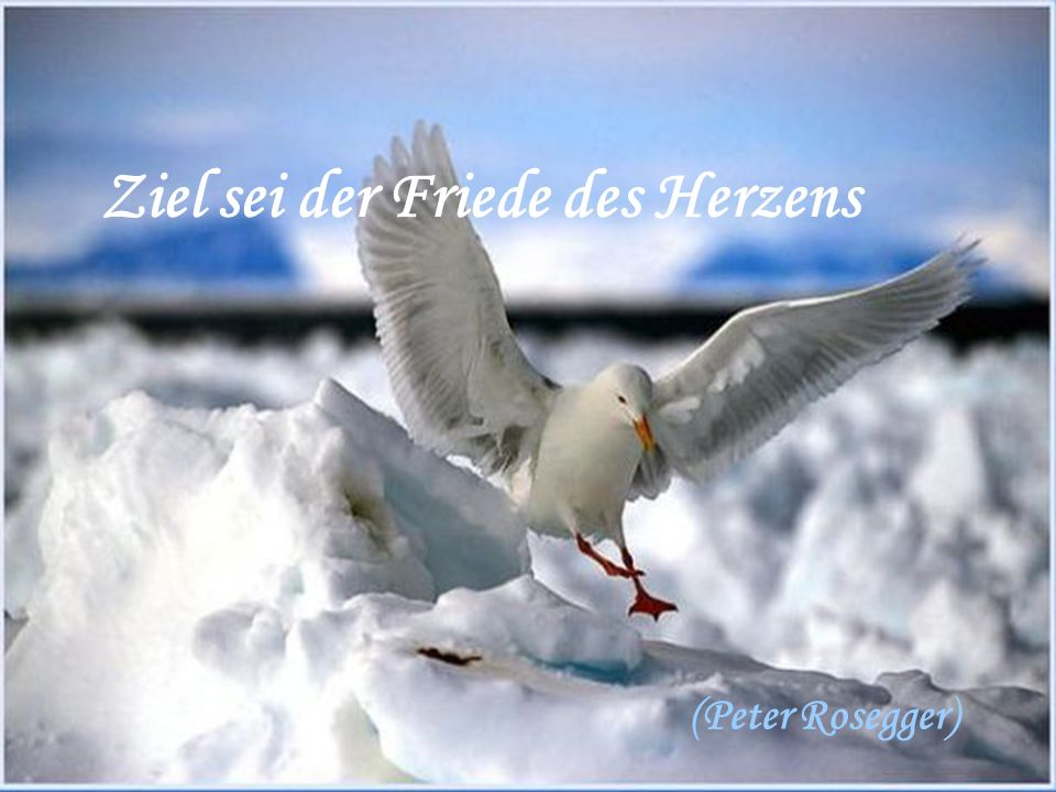 Ziel sei der Friede des Herzens