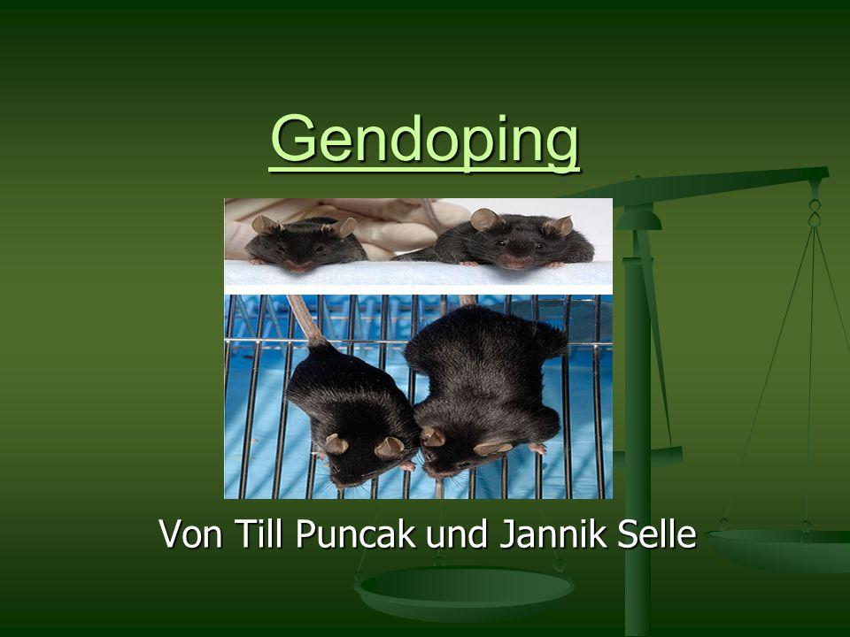 Von Till Puncak und Jannik Selle