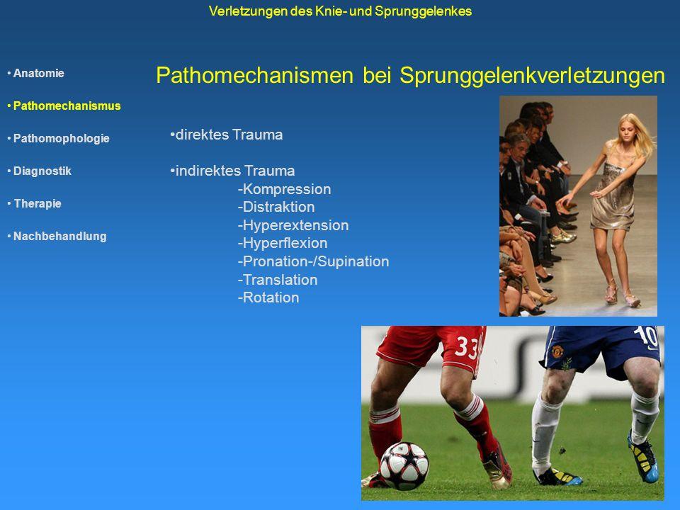 Pathomechanismen bei Sprunggelenkverletzungen