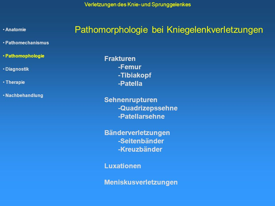 Pathomorphologie bei Kniegelenkverletzungen