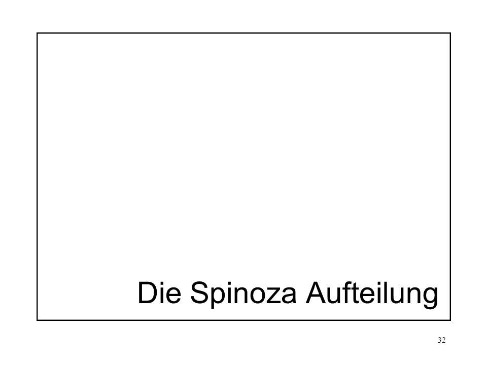 Die Spinoza Aufteilung
