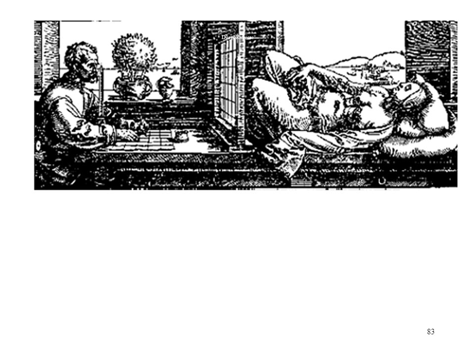 Dürer Reverse