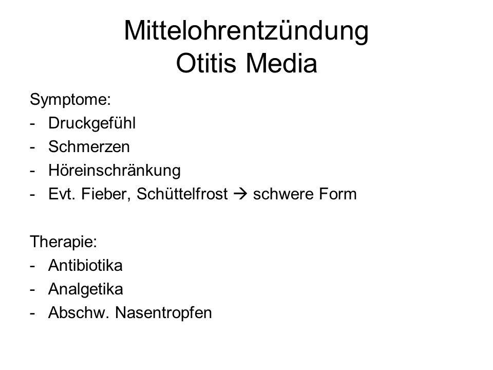 Mittelohrentzündung Otitis Media