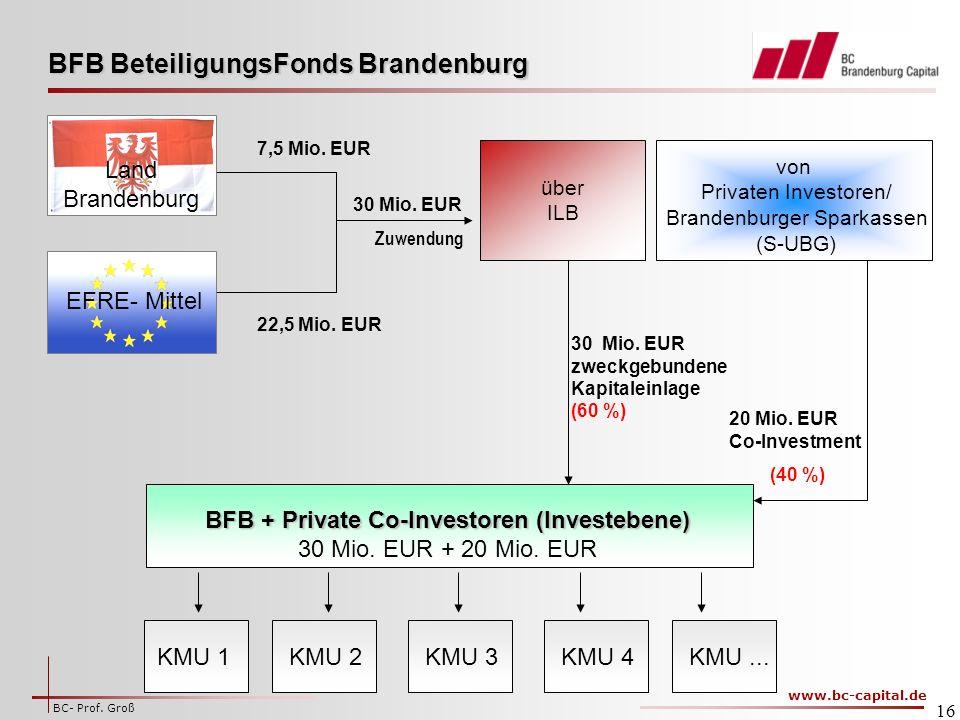 BFB + Private Co-Investoren (Investebene)