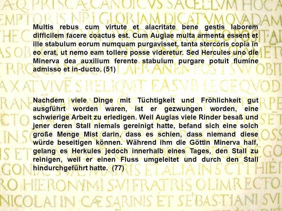 Multis rebus cum virtute et alacritate bene gestis laborem difficilem facere coactus est. Cum Augiae multa armenta essent et ille stabulum eorum numquam purgavisset, tanta stercoris copia in eo erat, ut nemo eam tollere posse videretur. Sed Hercules uno die Minerva dea auxilium ferente stabulum purgare potuit flumine admisso et in-ducto. (51)