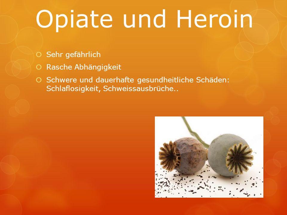 Opiate und Heroin Sehr gefährlich Rasche Abhängigkeit