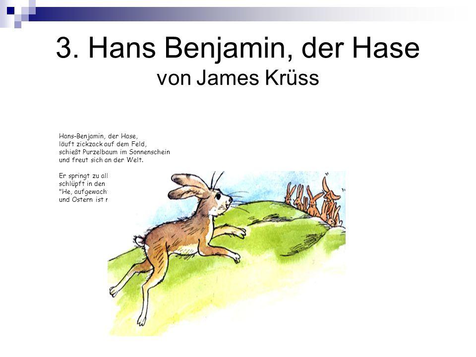 3. Hans Benjamin, der Hase von James Krüss