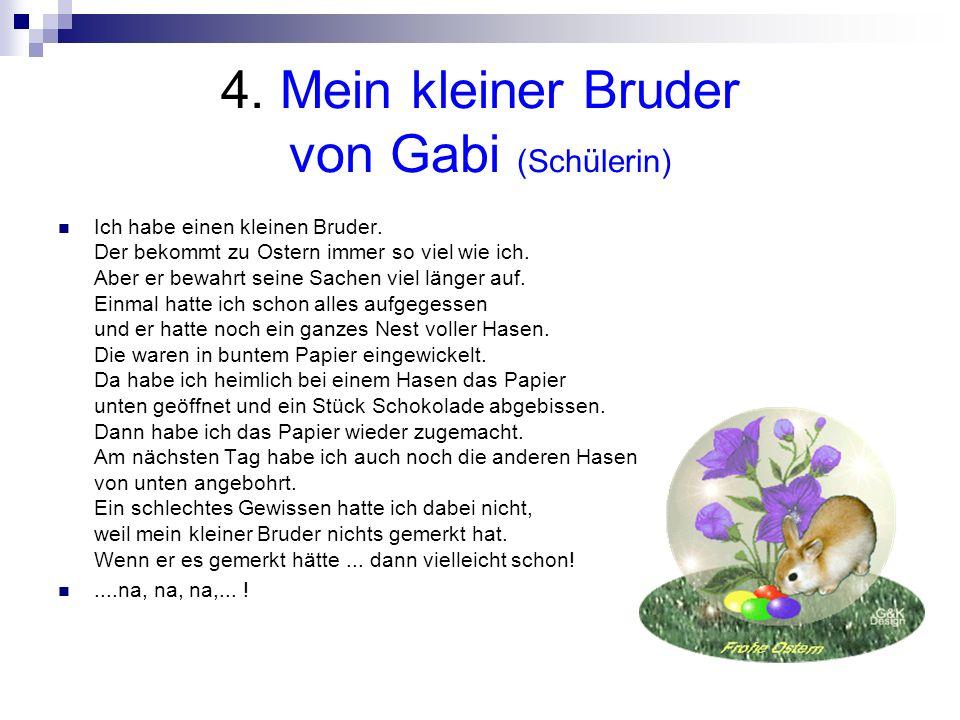 4. Mein kleiner Bruder von Gabi (Schülerin)