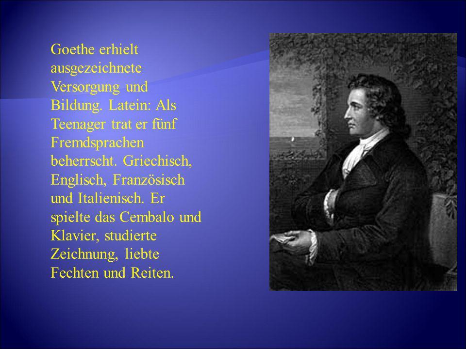 Goethe erhielt ausgezeichnete Versorgung und Bildung
