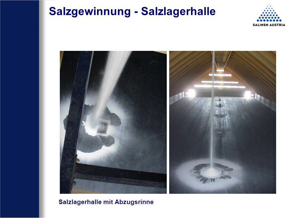 Salzgewinnung - Salzlagerhalle