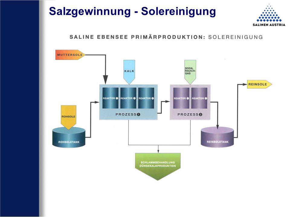 Salzgewinnung - Solereinigung