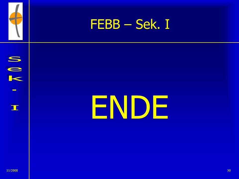 FEBB – Sek. I ENDE 11/2008