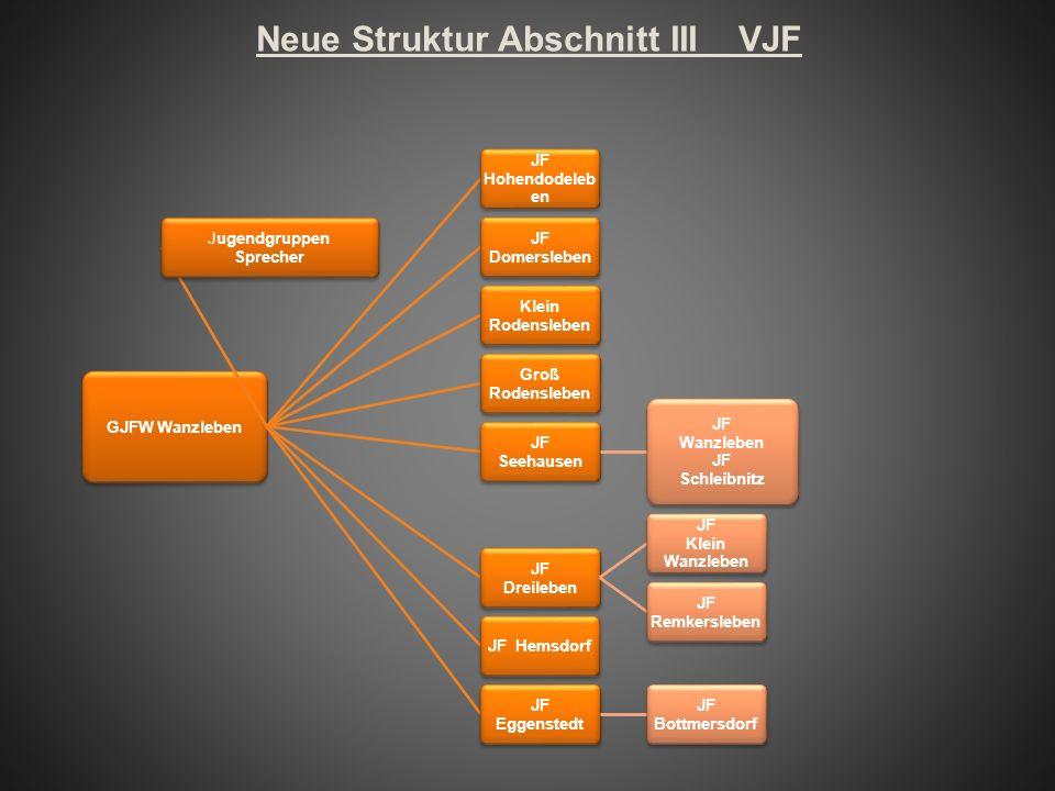 Neue Struktur Abschnitt III VJF