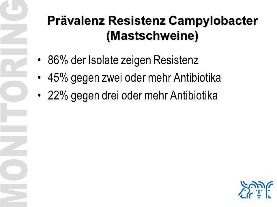 Prävalenz Resistenz Campylobacter (Mastschweine)