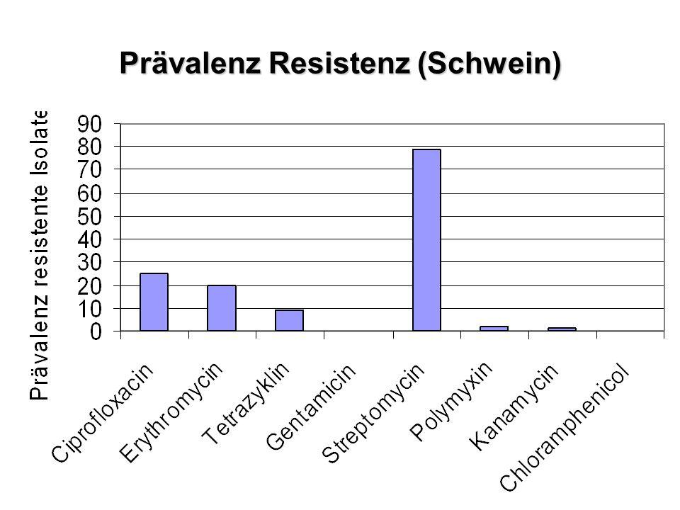 Prävalenz Resistenz (Schwein)