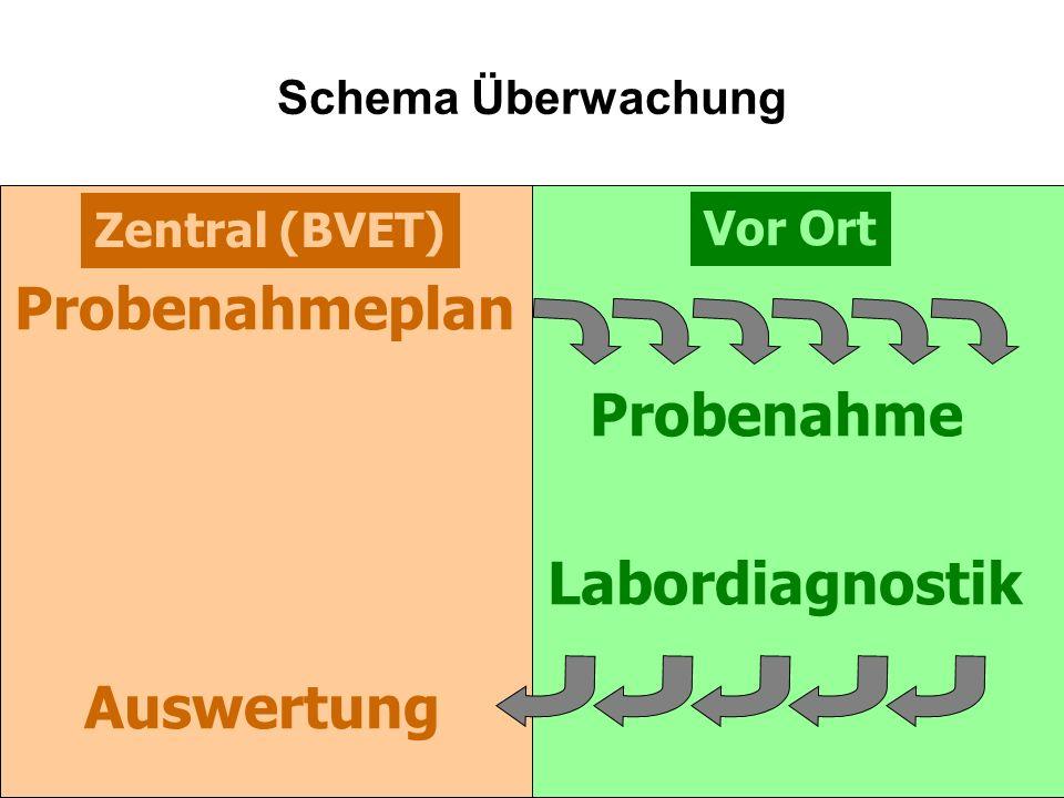 Probenahmeplan Probenahme Labordiagnostik Auswertung