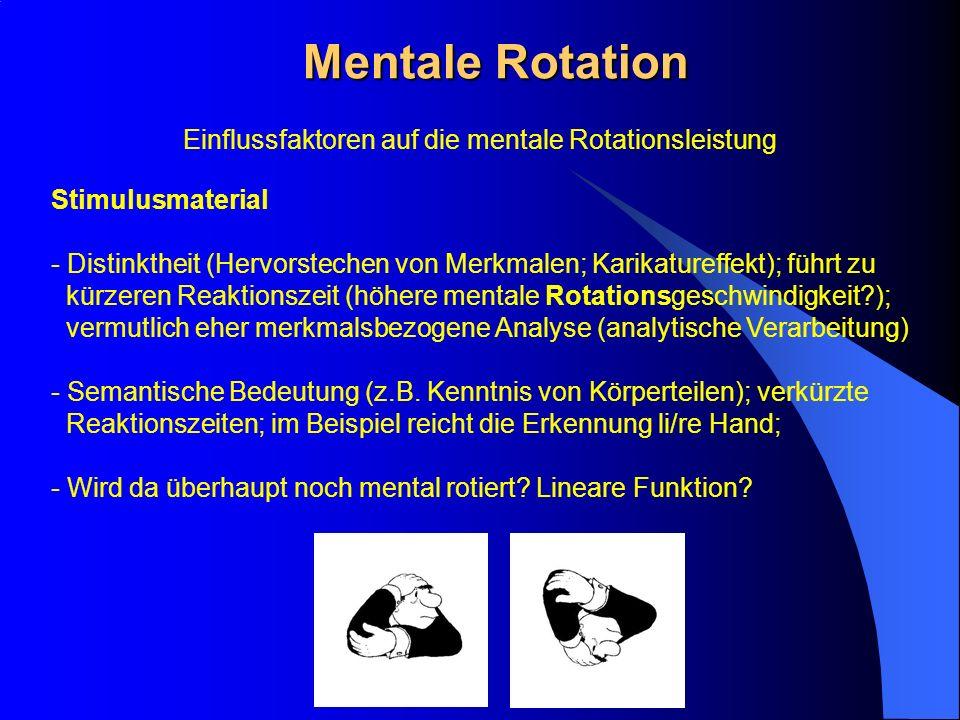 Einflussfaktoren auf die mentale Rotationsleistung