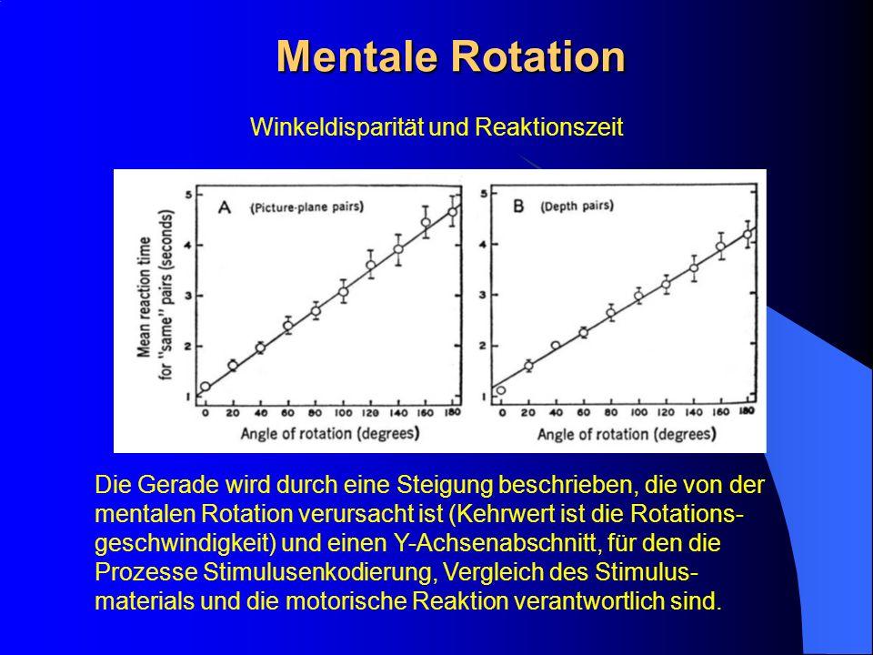 Winkeldisparität und Reaktionszeit