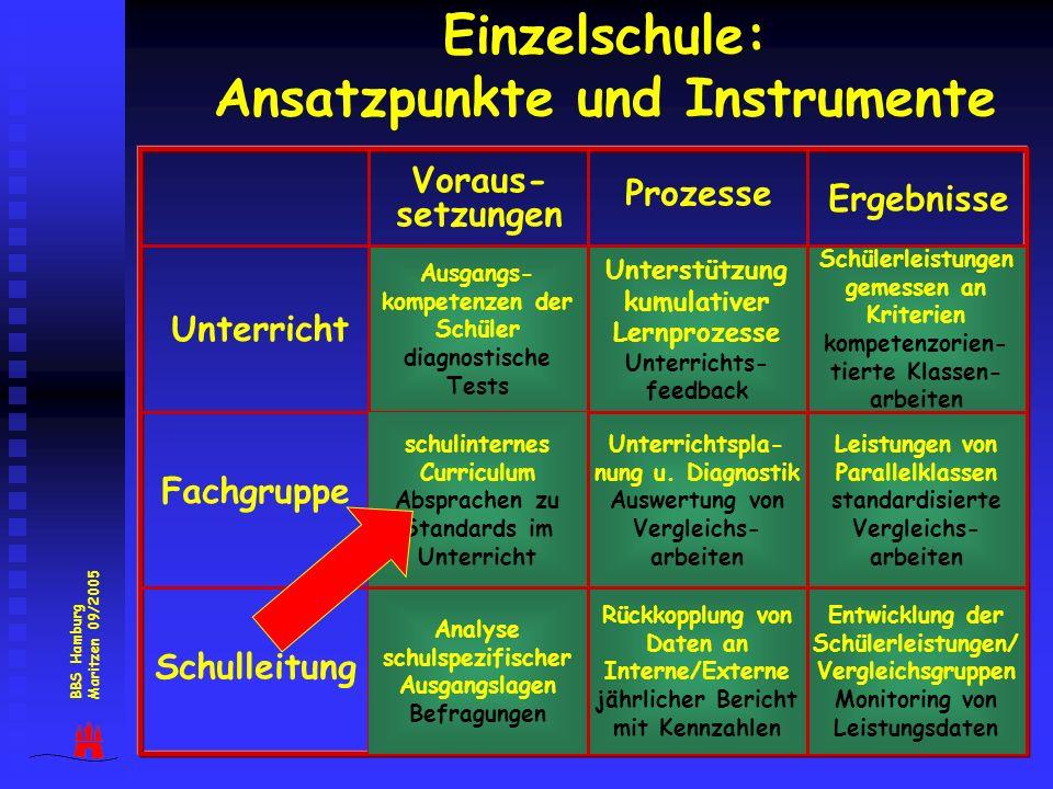 Einzelschule: Ansatzpunkte und Instrumente