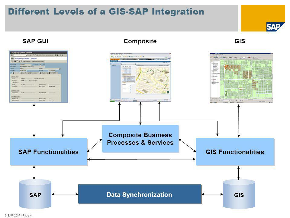 Different Levels of a GIS-SAP Integration