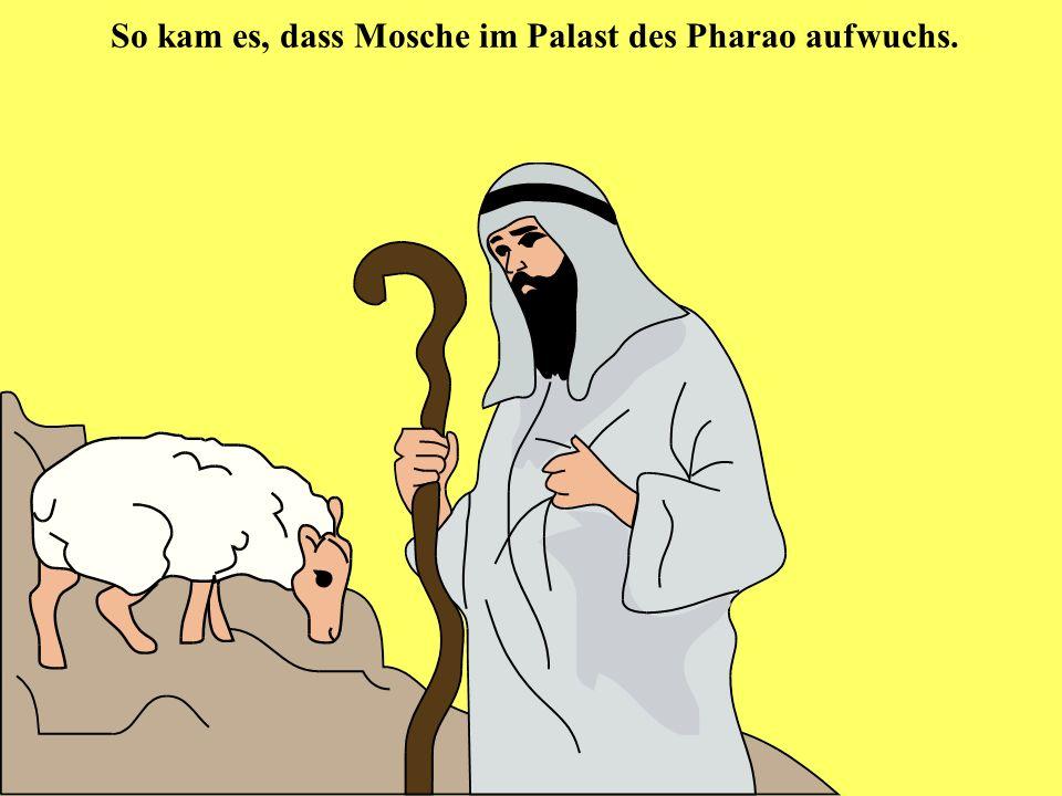 So kam es, dass Mosche im Palast des Pharao aufwuchs.