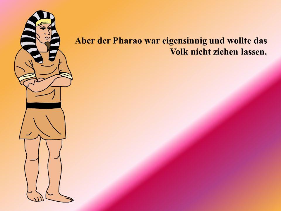 Aber der Pharao war eigensinnig und wollte das