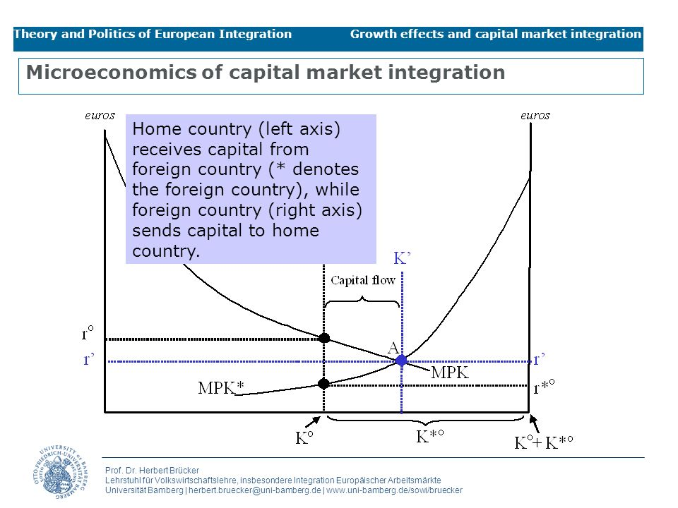 Microeconomics of capital market integration