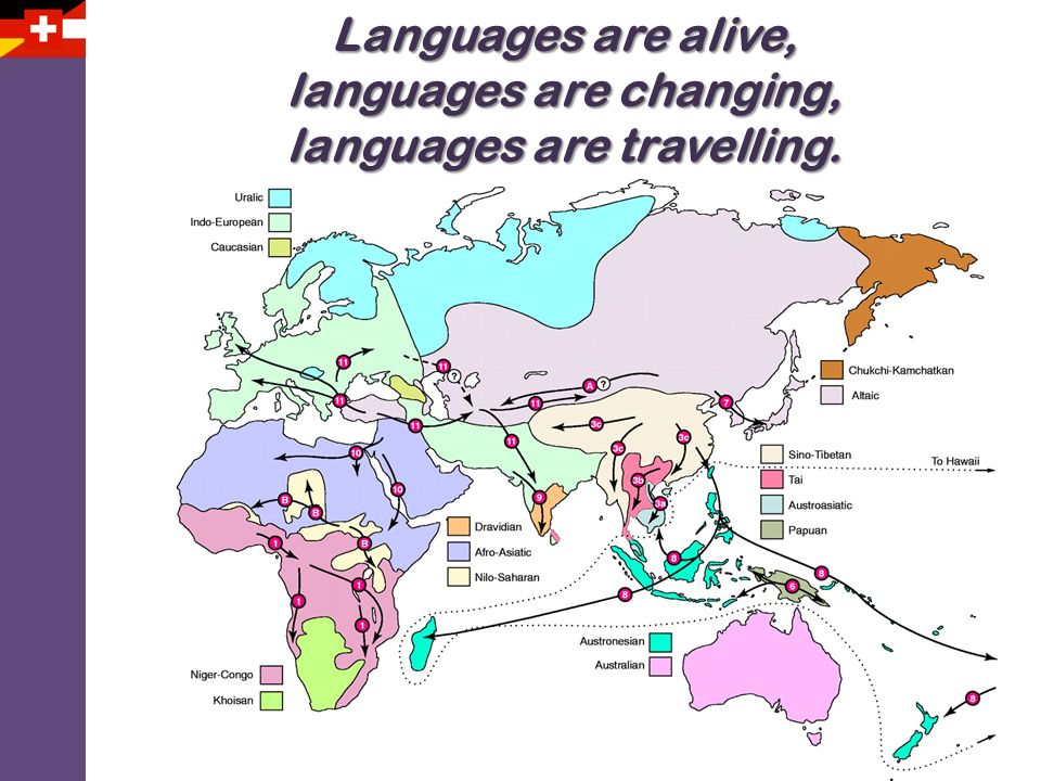 languages are changing, languages are travelling.
