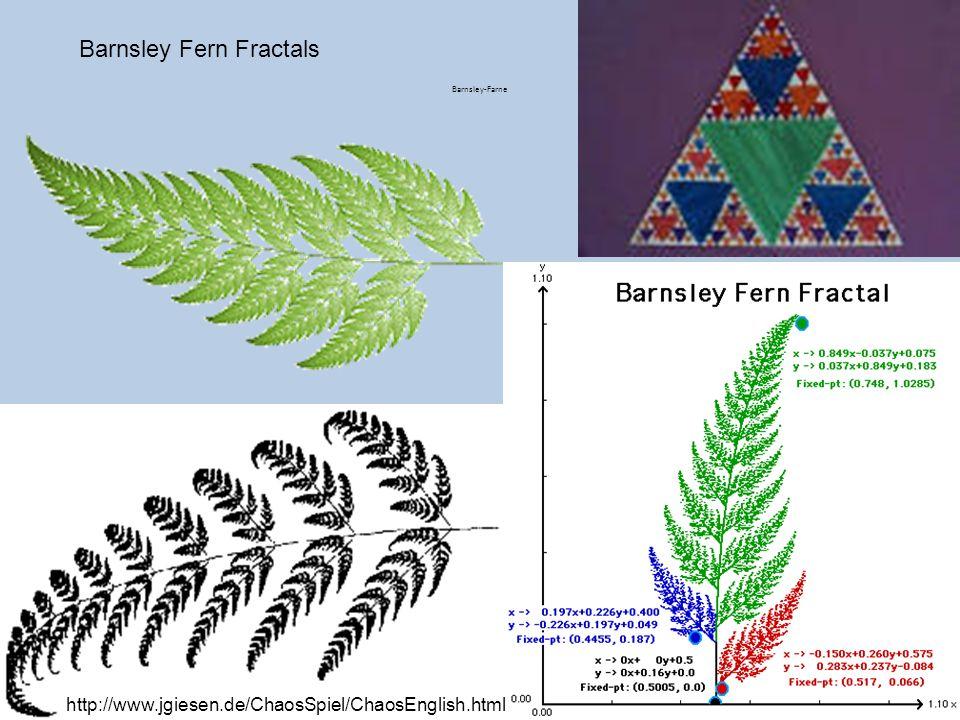 Barnsley Fern Fractals