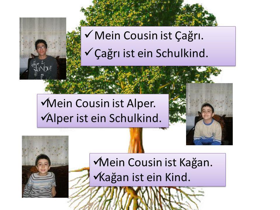 Mein Cousin ist Çağrı. Çağrı ist ein Schulkind. Mein Cousin ist Alper. Alper ist ein Schulkind. Mein Cousin ist Kağan.