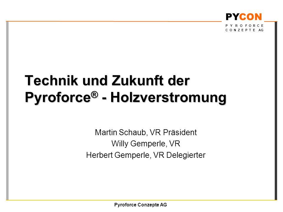 Technik und Zukunft der Pyroforce® - Holzverstromung